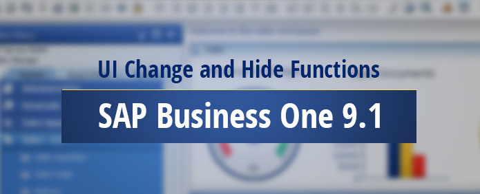 ui-change-hide-functions-sap-business-one-91