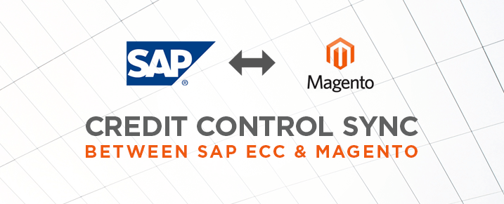 Credit Management for SAP Magento B2B Integration