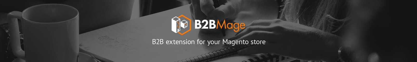 B2BMage Magento Extension
